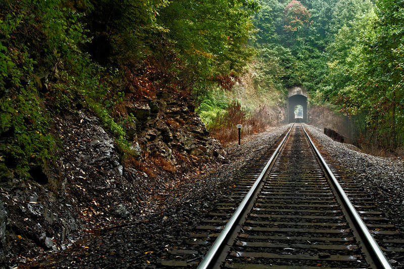 Misty Tracks