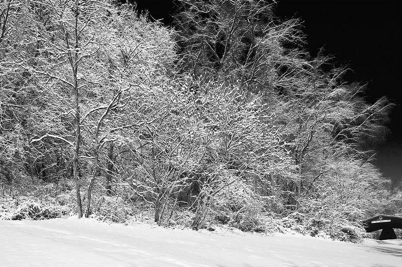 Snow Scene: Robinson Community Park, Robinson Twp. , PA