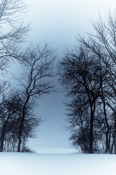 Winter Scene #2A