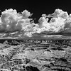 Grand - Grand Canyon in Black and White