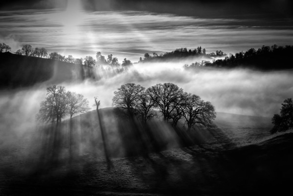 My valley foggy sunrise B&W