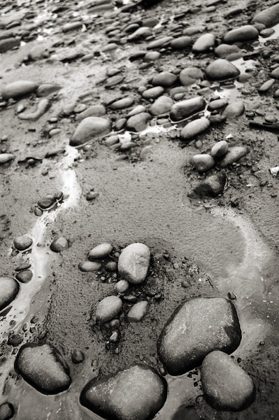 Pebbles and rocks on a beach at low tide - Stock Image by Professional Nature Photographer Christina Craft