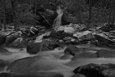 Mouse Creek Neutral