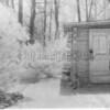 Cass's Cabin