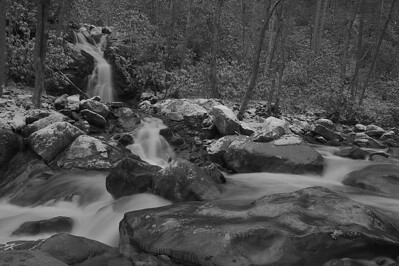 Big Creek Motion