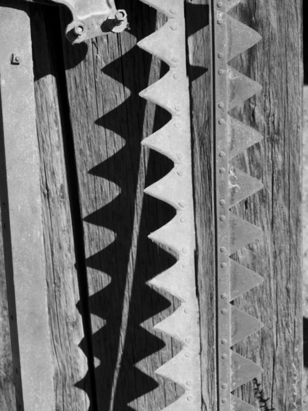 old Saw blades on side of a barn, Fort Churchhill, Nevada
