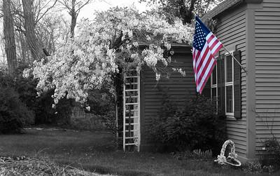 Cape Cod house, patriotic
