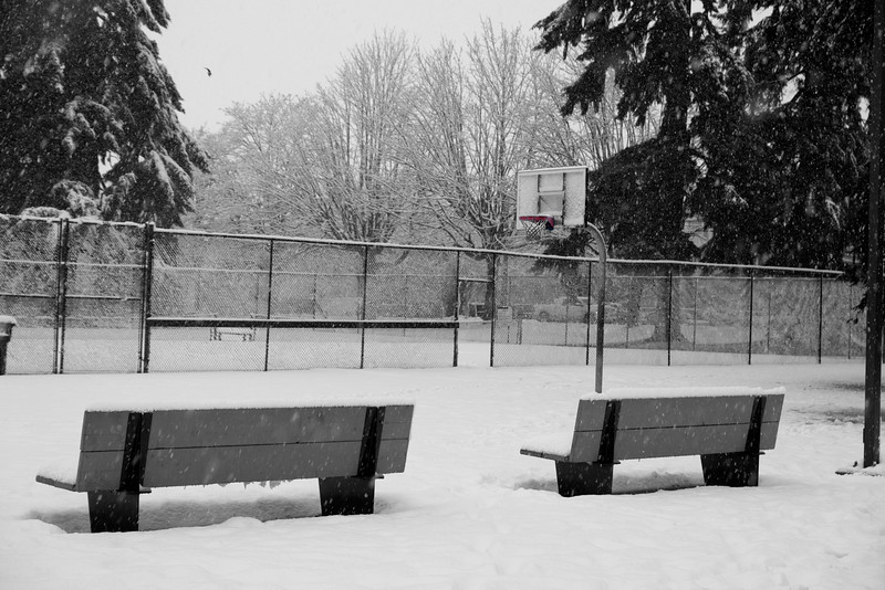 Snow covered benches beside the court.