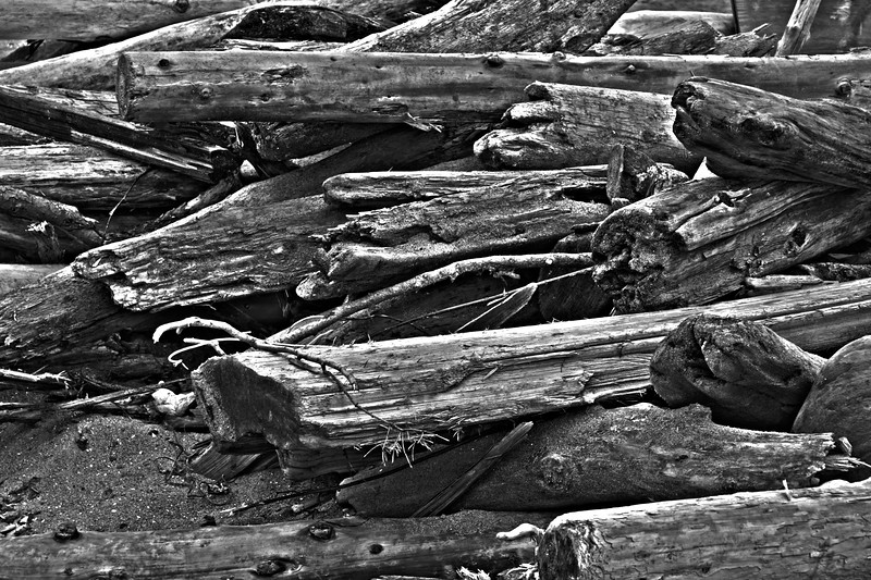 Drift wood in black and white.