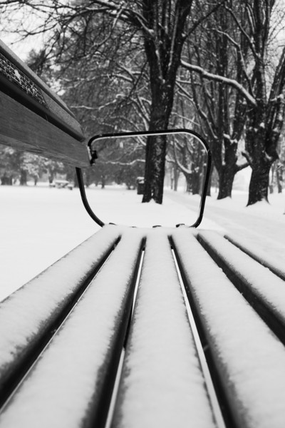 Bench in  the snow.