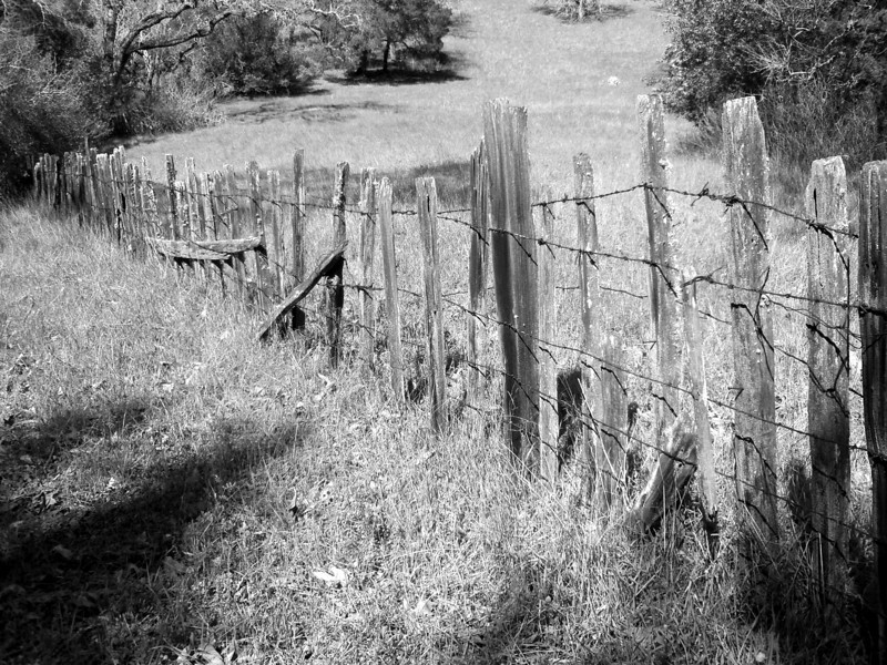 Fence in Almaden County Park, San Jose, California