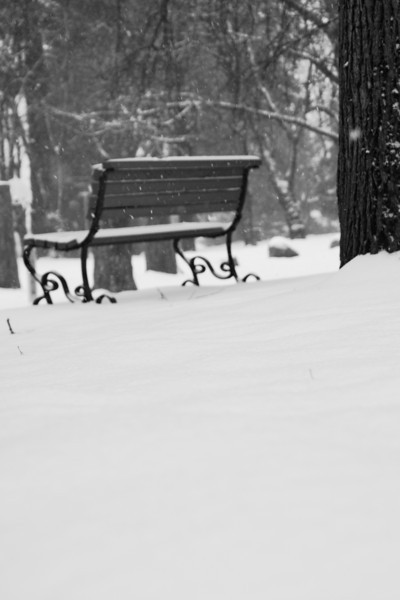 Empty bench in the snow.