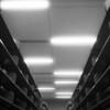 Empty Shelves