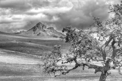 Peaks off of Lone Tree Rd.