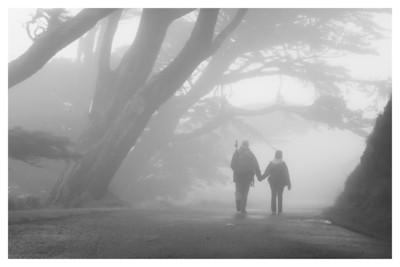 Misty Stroll