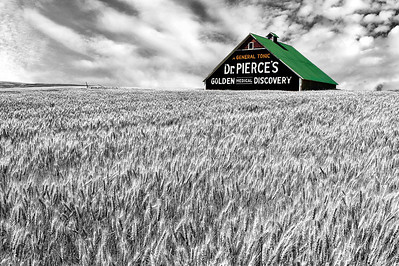 """Dr. Pierce's Tonic"" Rural advertising, old school. What could be more evocative of ""amber waves of grain"" than this old barn near Waterville in eastern Washington?"