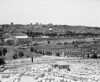 A view of the old city of Jerusalem as seen over the graveyards on the Mount of Olives. The Dome Of the Rock is in the center just over the old city walls. (Scanned from black and white film.)