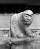 A stone statue of a lion at the Gyeongbok royal palace in Seoul, South Korea. (Scanned from black and white film.)