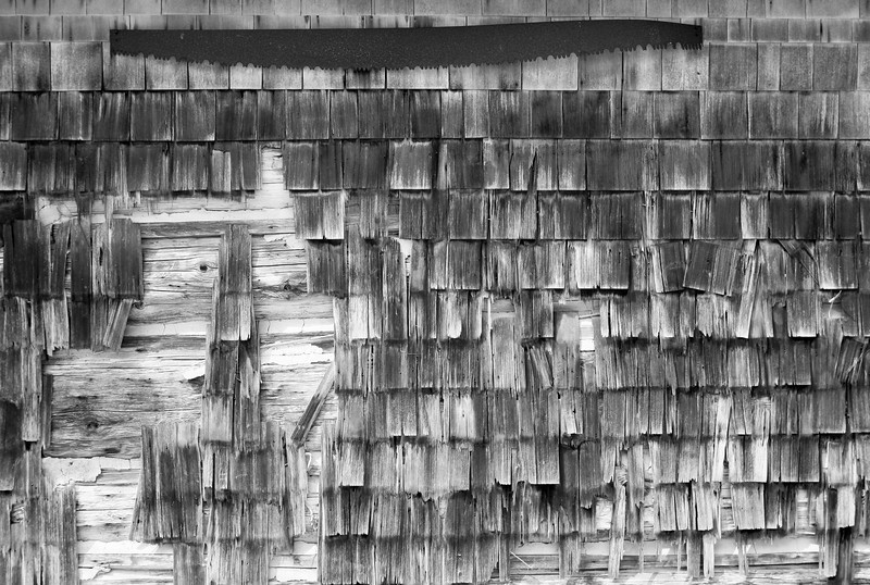 Old wood shingles on a barn wall have weathered into a kind of mosaic patter. A rusty old saw is located at the top. (In black and white infrared.)