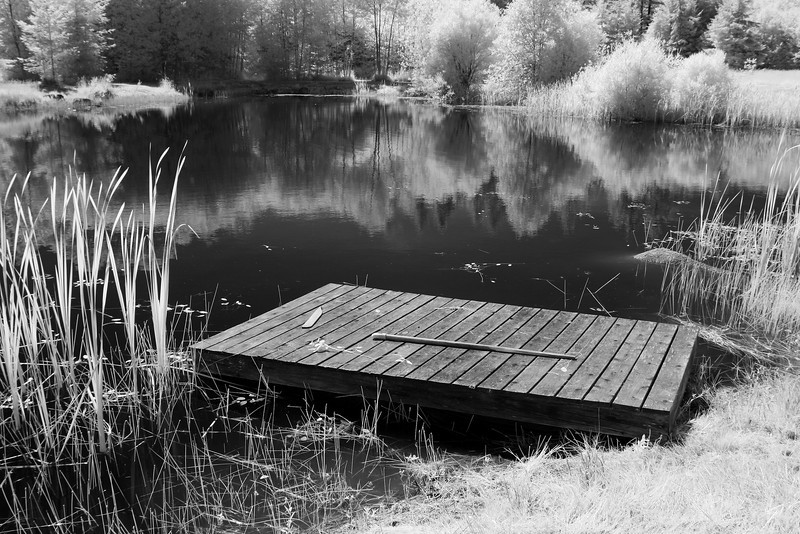 A swimming hole in the country with a wood raft. Taken with a camera converted to infrared light.