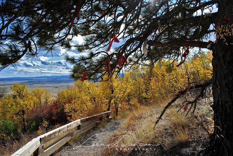 Bear Butte Prayer Flags<br /> October, 2011