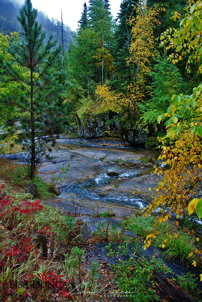 Little Elk Creek<br /> October, 2011