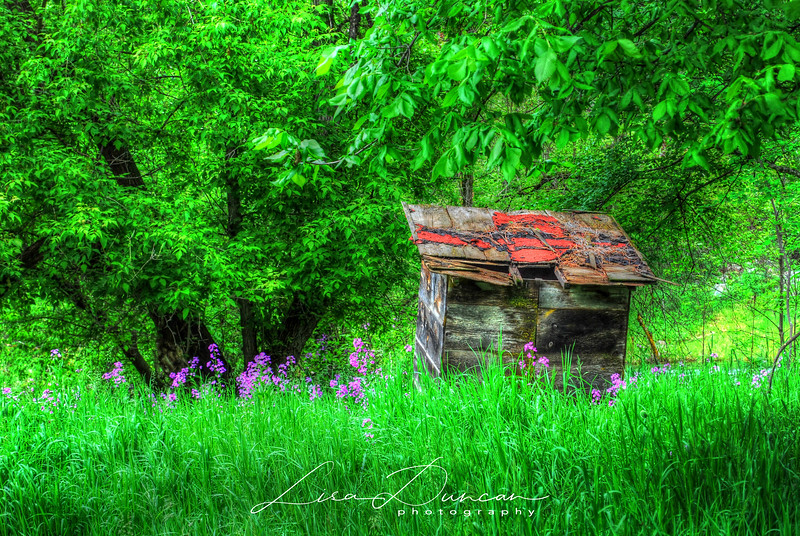 Thunderhead Outhouse<br /> June, 2011