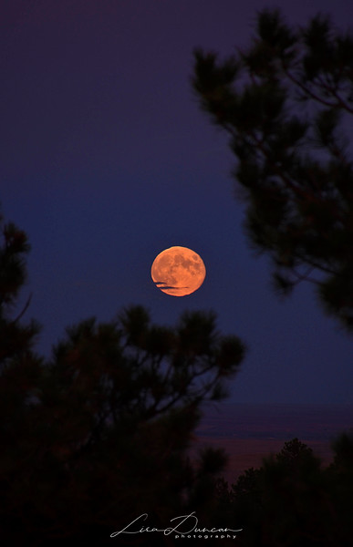 Coyote Flats Moon<br /> September, 2013