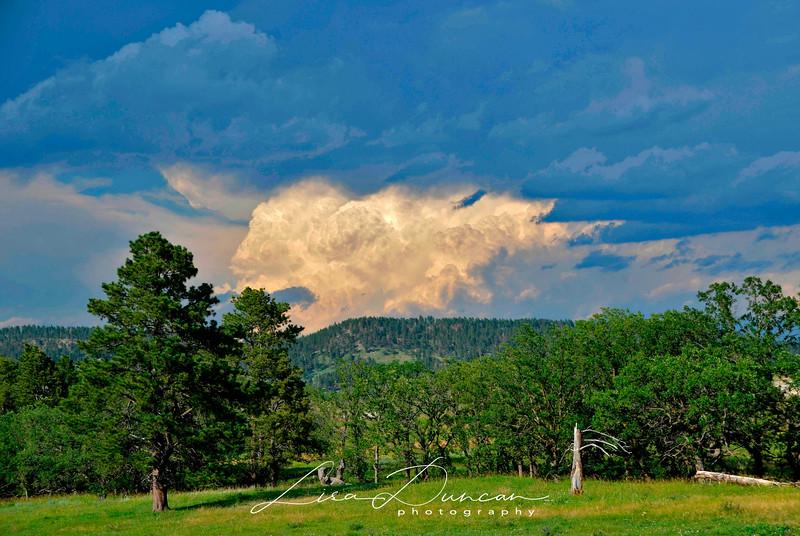 Vanocker Thunderhead<br /> July, 2013