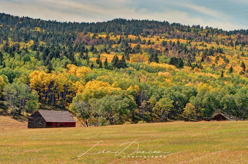 Minnesota Ridge<br /> September, 2012