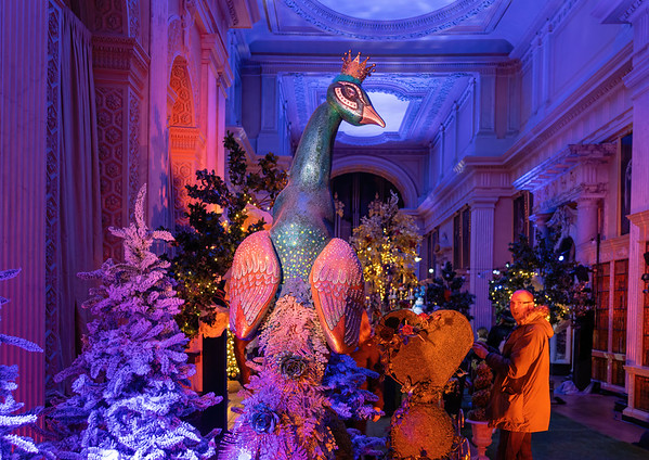 Alice in the Palace, Christmas at Blenheim Palace 2019 - 31/12/2019@16:14