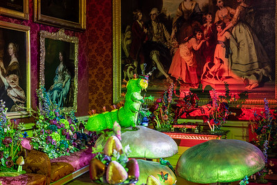 Alice in the Palace, Christmas at Blenheim Palace 2019 - 31/12/2019@15:47