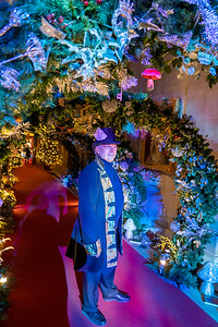 Alice in the Palace, Christmas at Blenheim Palace 2019 - 31/12/2019@15:33