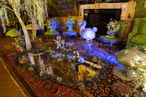 Alice in the Palace, Christmas at Blenheim Palace 2019 - 31/12/2019@15:50