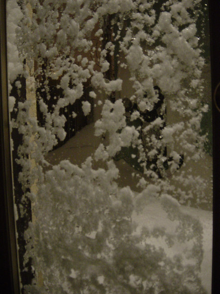Just messing around looking out the back door last night.
