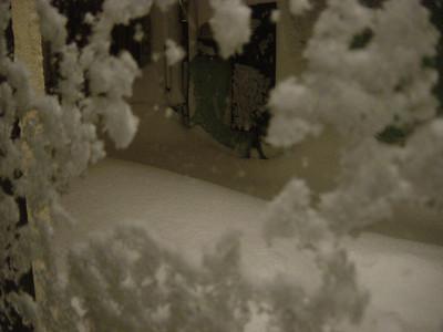 Blizzard 2006