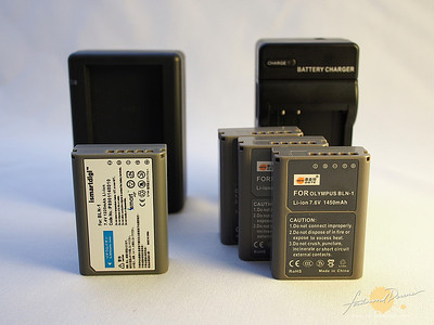 3rd Party Olympus OM-D E-M5 Batteries from iSmart and DSTE