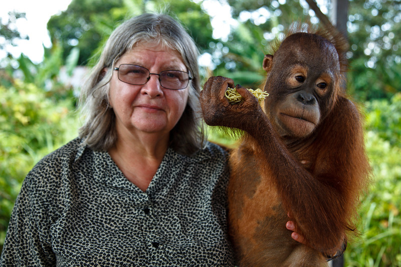 Dr. Birute Galdikas with an orphaned juvenile orangutan at her Orangutan Care Center.