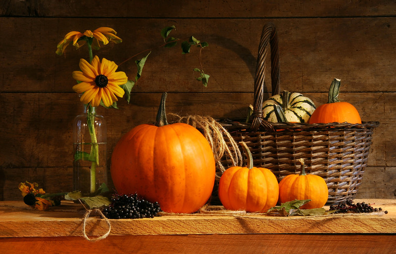 Autumn still life with pumpkins and flowers
