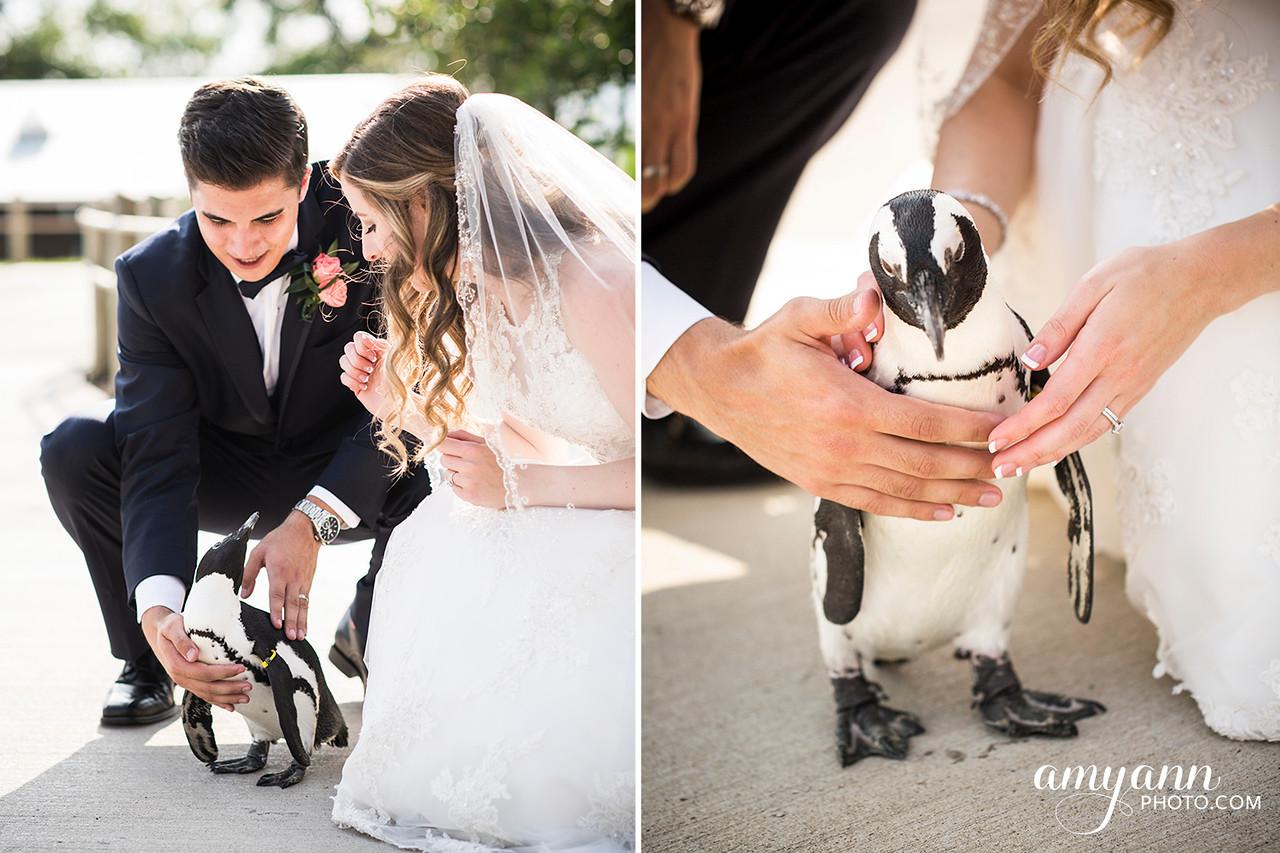 victoriaevan_weddingblog078