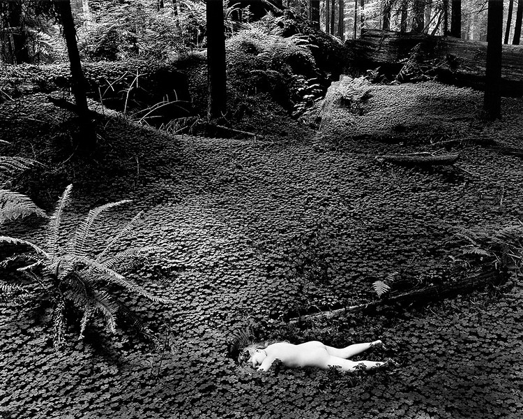 Child in Forest (1951)