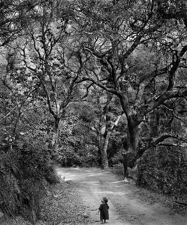 Child on Forest Road (1958)