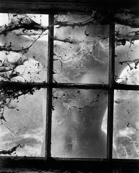 Nude Behind Cobwebbed Window (1955)