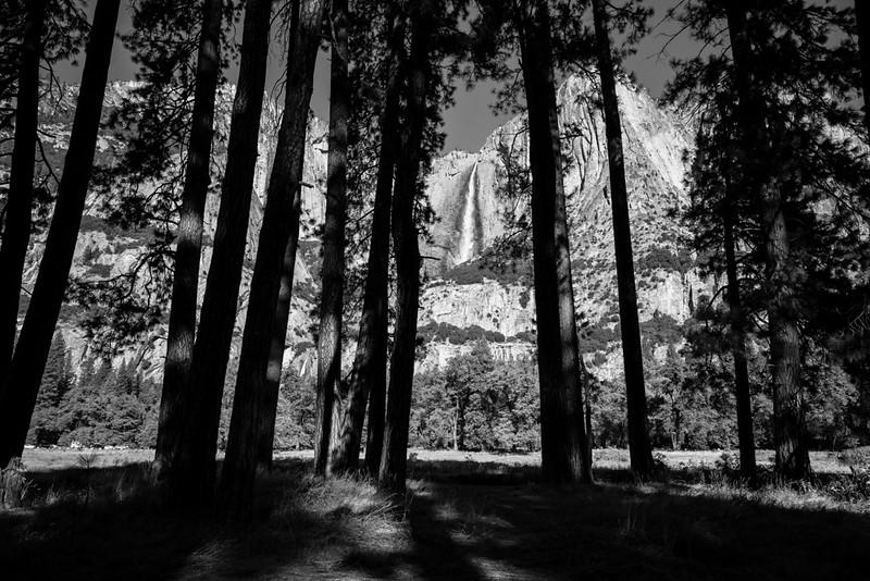 Yosemite Fall 2016-340