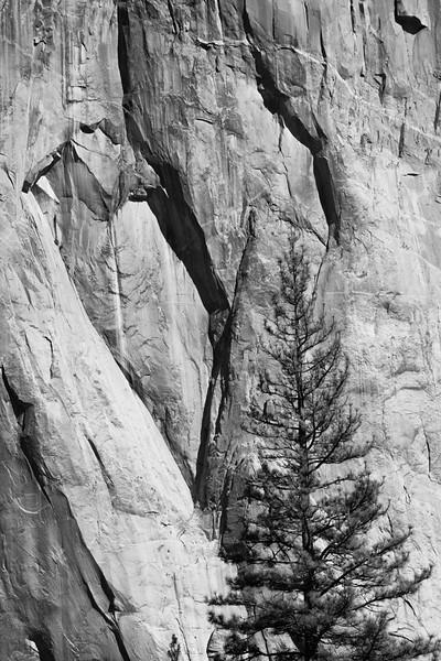 Yosemite Fall 2016-13