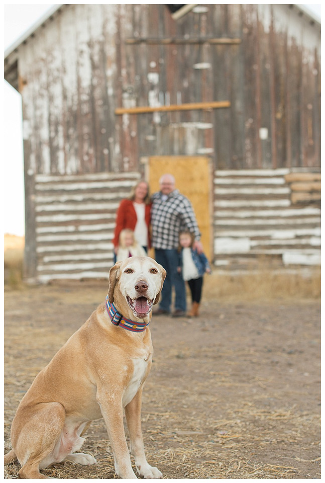 Littleton Colorado Family and Pet Photography-2