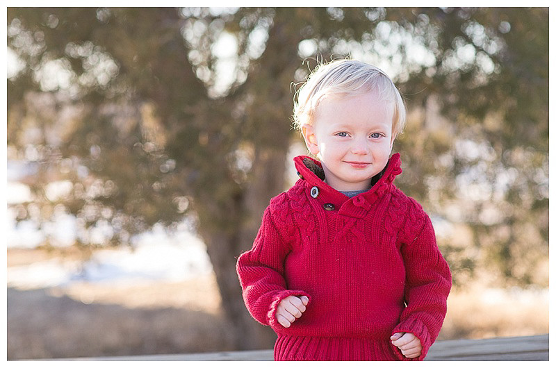 _17 Mile Farm Centennial CO Holiday Mini Session9