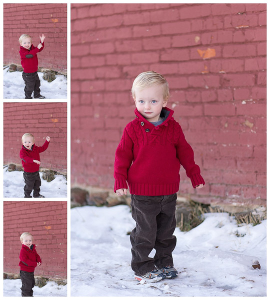 _17 Mile Farm Centennial CO Holiday Mini Session1