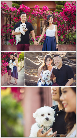 SD_Engagement_AlbedoPhotography_582