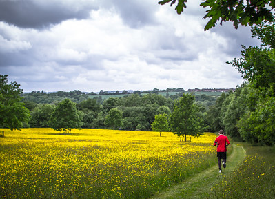 Severn Valley Trail Race